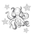 octopus and starfish sketch octopus vector image vector image