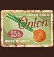 onion vegetable metal plate rusty market price vector image vector image