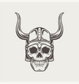 scull in horned helmet vector image vector image