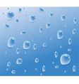 water drops background vector image vector image