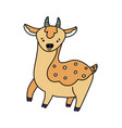 coloured deer line icon vector image vector image