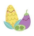 corn eggplant and peas menu character cartoon food vector image