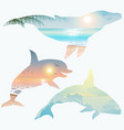 double exposure whale dolphin wildlife concept vector image