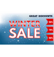 great winter sale concept banner realistic style vector image