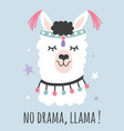 hand drawn cartoon no drama llama poster vector image