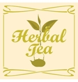 label for herbal tea vector image
