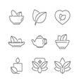 line icons Set of Alternative Medicine herb Icons vector image