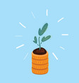plant on stack coins on vector image