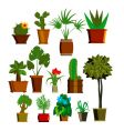 Plants vector | Price: 1 Credit (USD $1)