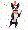 Boston Terrier Party vector image vector image
