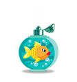 cute cartoon goldfish in soap bottle isolated on vector image