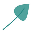 green light color of aovada leaf plant vector image vector image