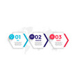 hexagonal style three steps business infographic vector image vector image