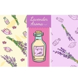 Perfect lavender set Two seamless patterns bottle vector image vector image