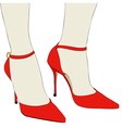 The beautiful shoes of an elegant woman vector image vector image