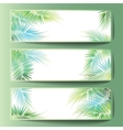 Banners with the palm tree branches vector image vector image