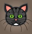 Cartoon grey tabby cat vector image vector image