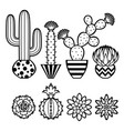 collection cacti vector image