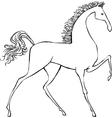 hand drawn horse vector image vector image