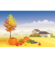 Harvest time vector image vector image