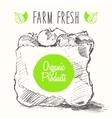 Organic farm food poster healthy sticker drawn vector image vector image