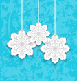 Set Christmas paper snowflakes vector image vector image