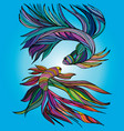 two small fishes yin-yang hand-drawn vector image
