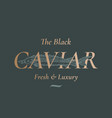 black caviar seafood abstract sign vector image