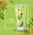 cocktail free drink tomorrow vector image