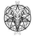 contour drawing of horned goat head and pentagram vector image vector image