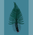 scolopendra bug with tropical leaf insect with vector image