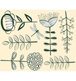 Seamless vintage flower pattern herbarium vector | Price: 1 Credit (USD $1)