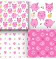 set of seamless pink-white patterns with pigs vector image vector image