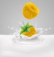 Yellow raspberry with milk vector image vector image