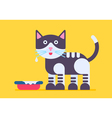 Cat Milk Flat vector image