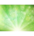 Green Sunburst Background vector image