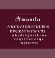 handdrawn script font display sty vector image vector image