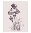 nature scene ladybug on top a mushroom vector image vector image
