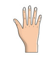 nice hand with all fingers and nails vector image vector image