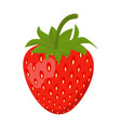 strawberry icon isolated on white background vector image