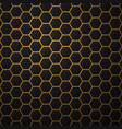 black background with hexagons vector image