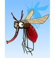cartoon funny big mosquito vector image