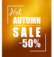 Hot autumn sale over sunny golden background vector image vector image