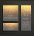luxury light sparkle banner card design in vector image vector image
