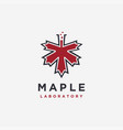 maple and laboratory beaker logo icon template vector image