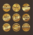 set gold and brown retro vintage labels 2 vector image vector image
