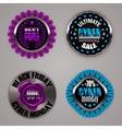 Set of black friday labels vector image vector image