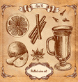 Set of mulled wine fruit and spices hand drawn vector image