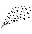 silhouette of a flock of birds black contours of vector image