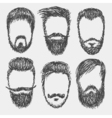 Beards vector image
